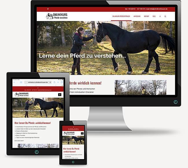 Onlinekurs Pferdevertrauen - Pferde endlich richtig verstehen